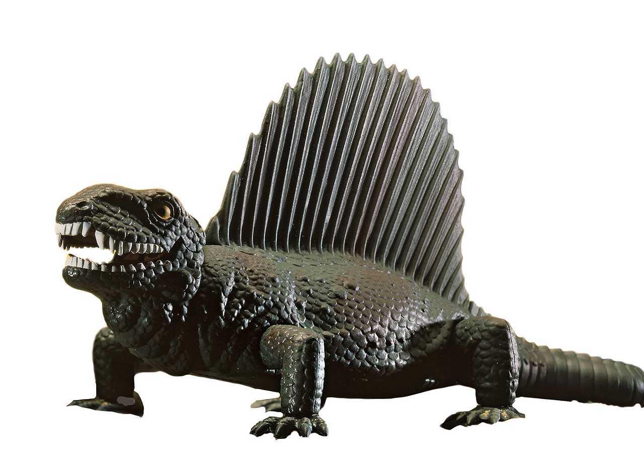 1:13 Dimetrodon
