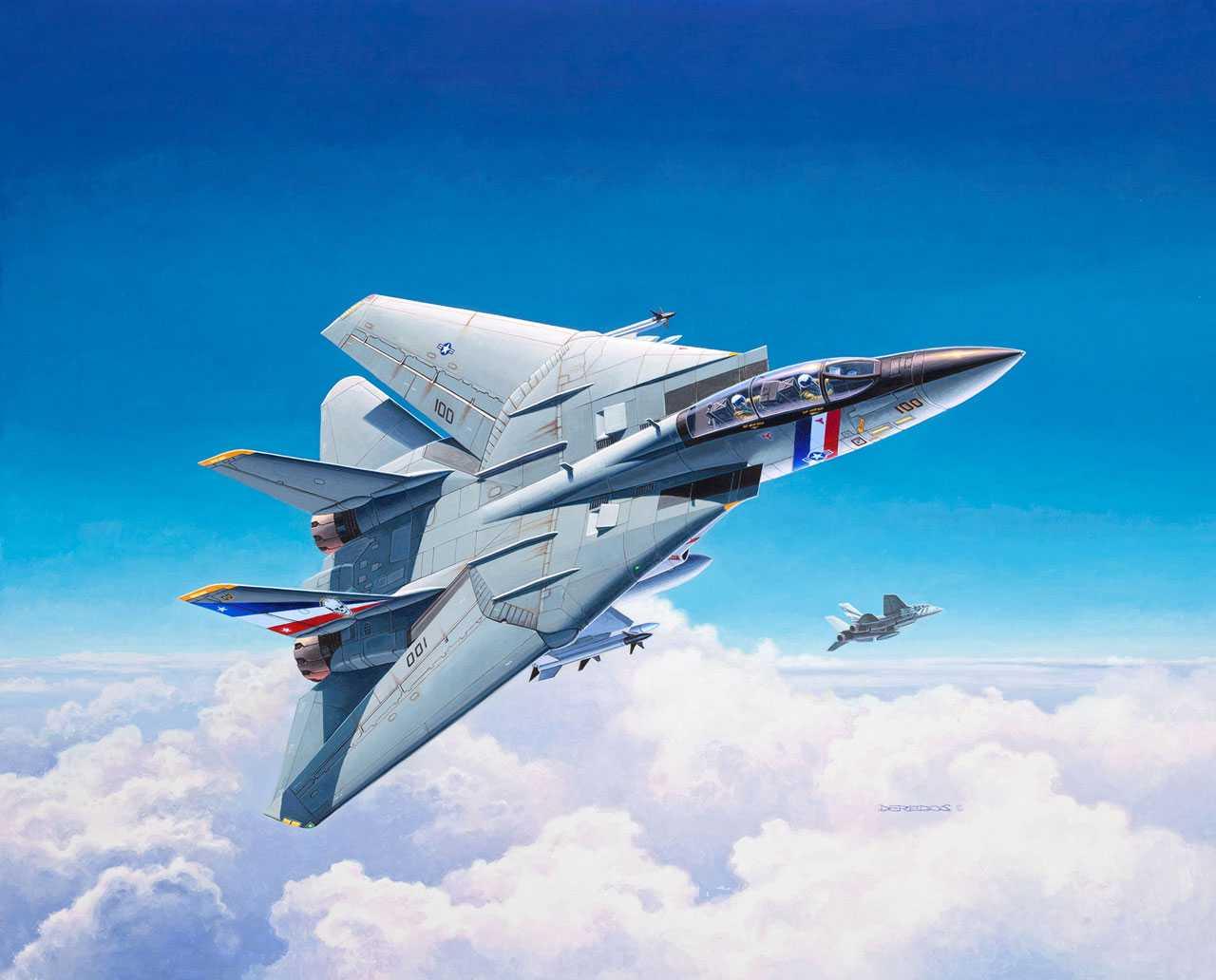 1:100 Grumman F-14D Super Tomcat