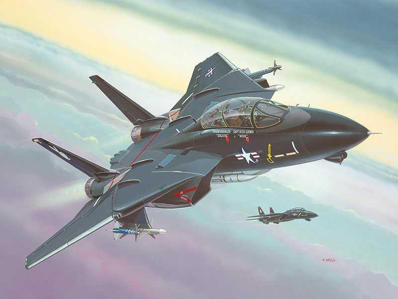 1:144 F-14 Black Tomcat